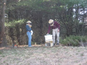 Desiree and Mike inspect the new hive.