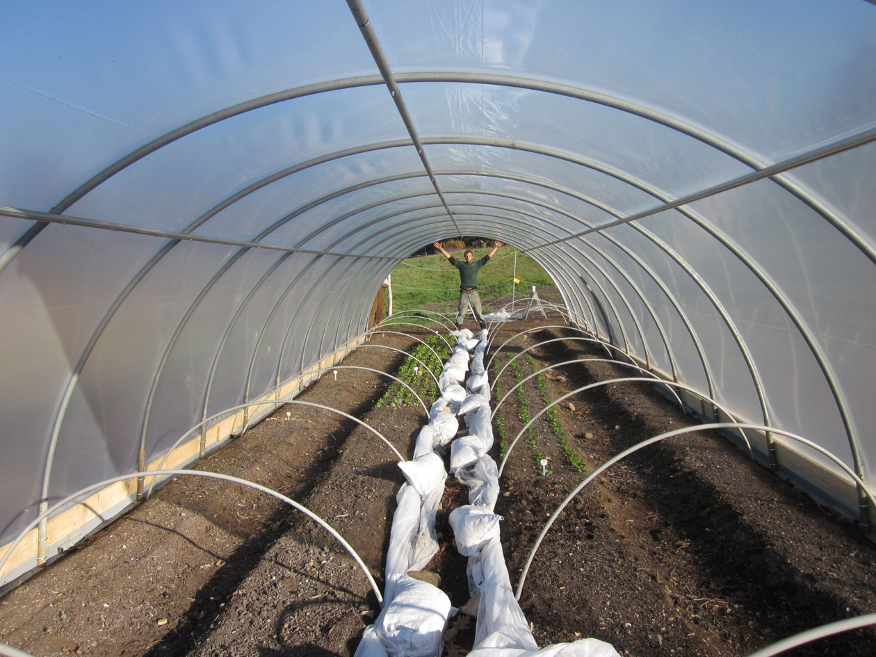 Hoop House Raising – Part 2 | Mehaffey Farm Blog